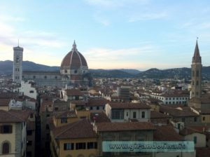 Panorama dalla Torre degli Arnolfi