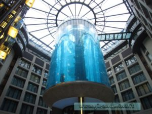 Radisson-Hotel-Belin-Acquario