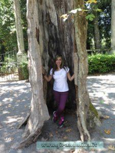 i Giardini di Villa Lante di Bagnaia, il parco interno