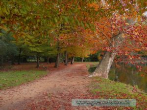 Un sentiero del parco di Villon Puccini a Pistoia