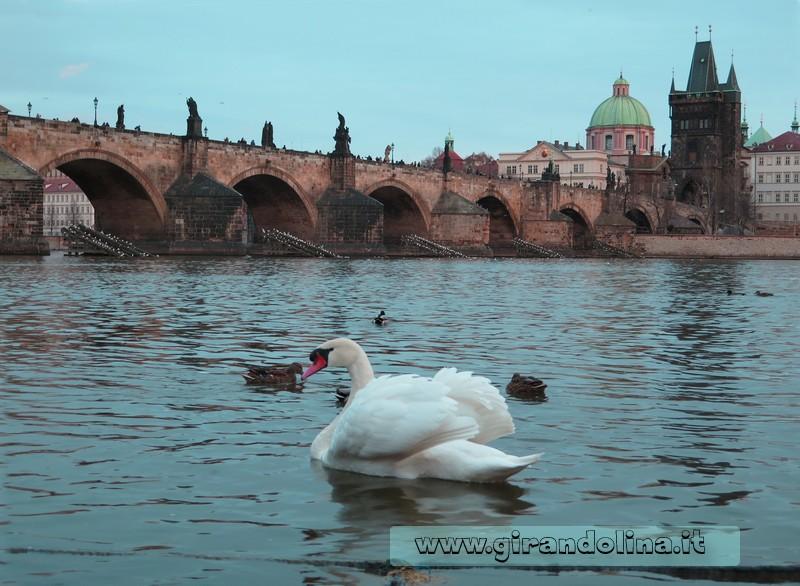 Praga e il Ponte Carlo