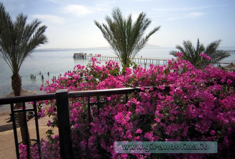 La veduta del Mar Rosso di Sharm El Sheikh dalla terrazza dell' Hotel
