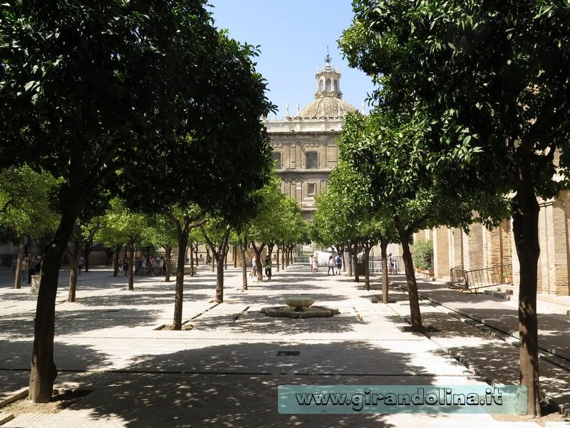 Cattedrale di Siviglia e il Patio de los Naranjios