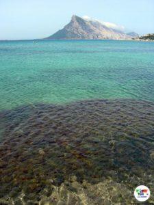 Cala Girgolu, Sardegna