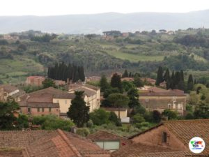 Siena veduta dalla Torre del Mangia