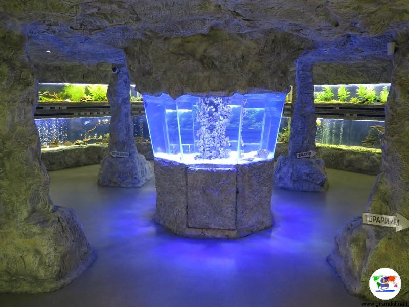 il Museo di Storia Naturale di Plovdiv