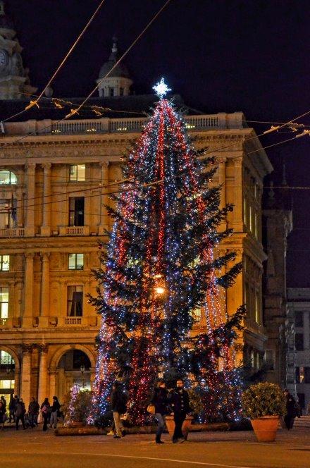 Alberi di natale italiani : L'albero di Natale di Genova © Genova città digitale