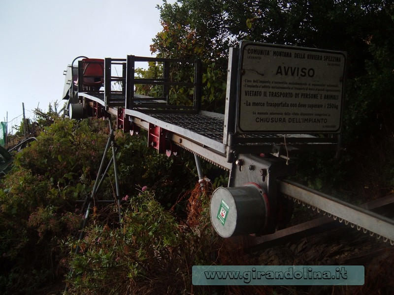 i trenini, che servono per la raccolta delle olive, sui terrazzamenti liguri, delle Cinque Terre
