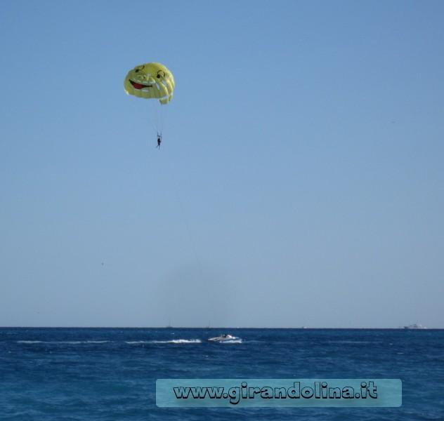 Girandolina in volo sull 'acqua