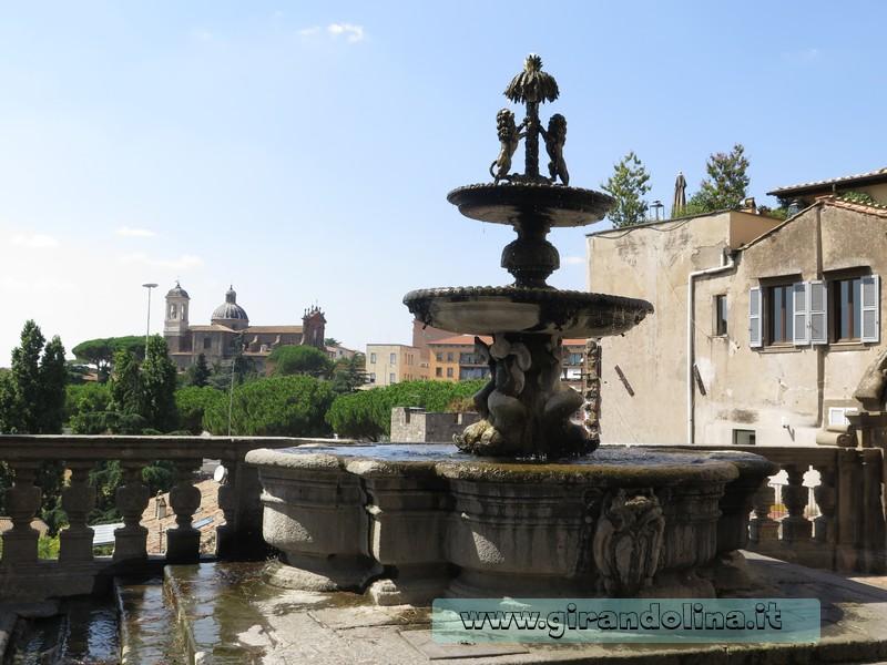 Viterbo Fontana Palazzo Priori