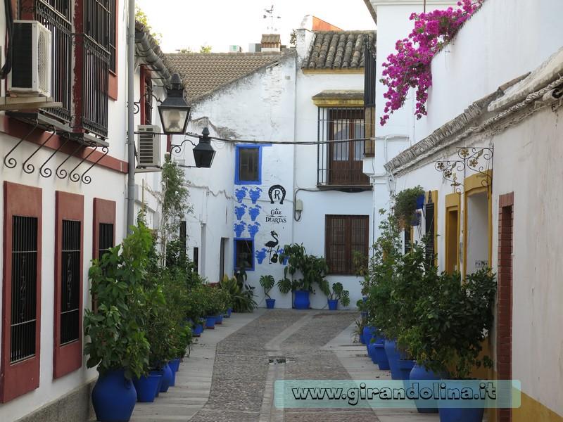 Le destinazioni più colorate in primavera, Cordova Andalusia Spagna