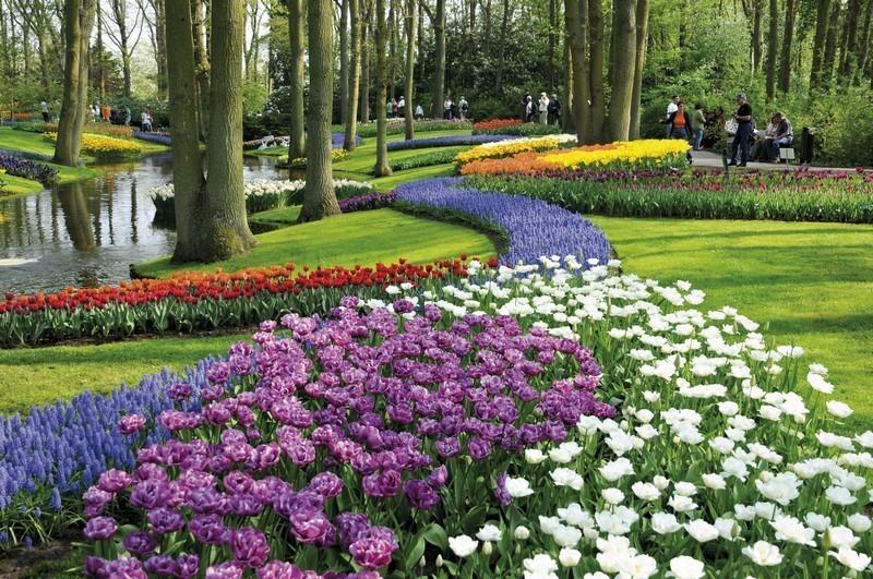 I 10 giardini più belli d'Europa, Keukenhof, Olanda