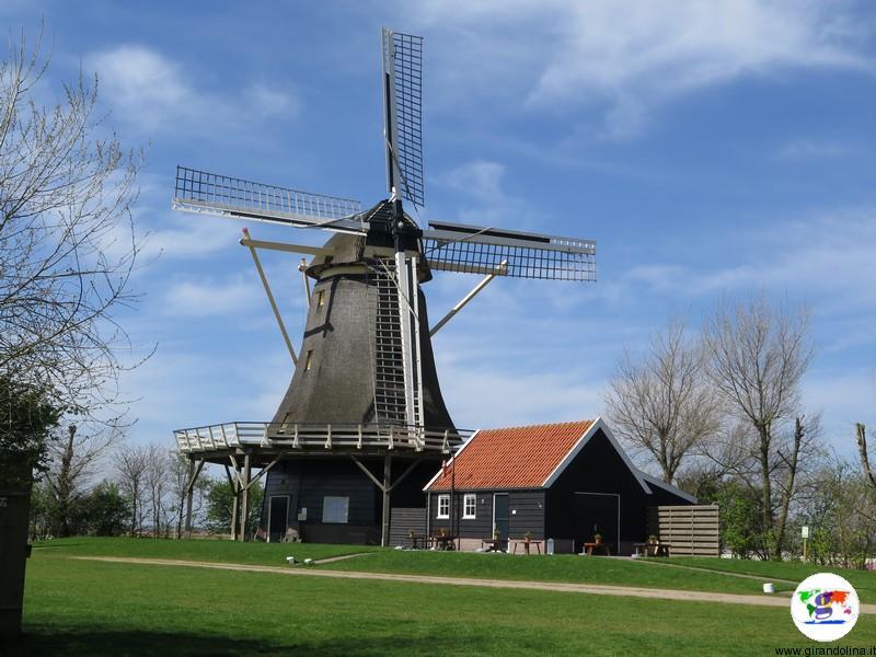Kop van Noord-Holland, un mulino a vento