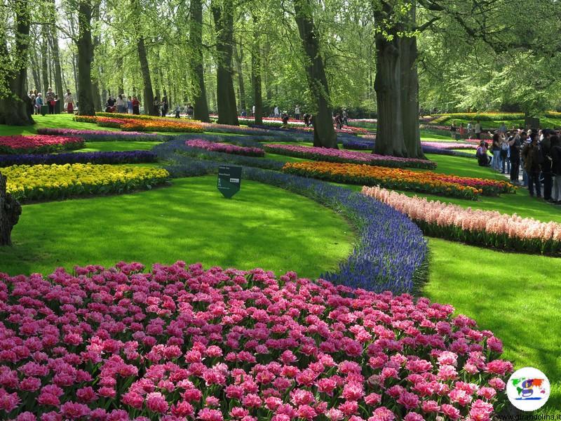 Keukenhof, il parco più bello del mondo