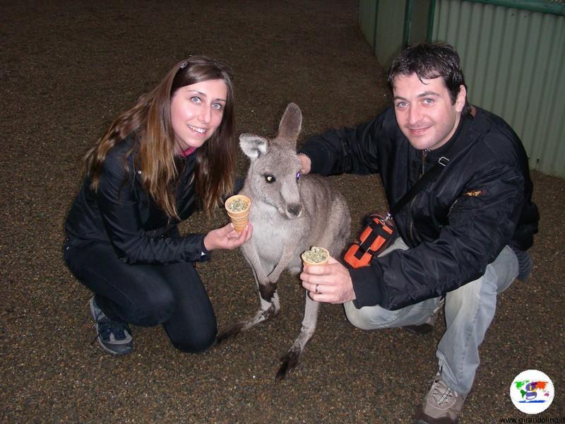 Assicurazione di viaggio per Australia, tutte le info pratiche per farla