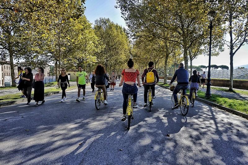 Le attività da fare a Lucca, andare in bicicletta sulle Mura