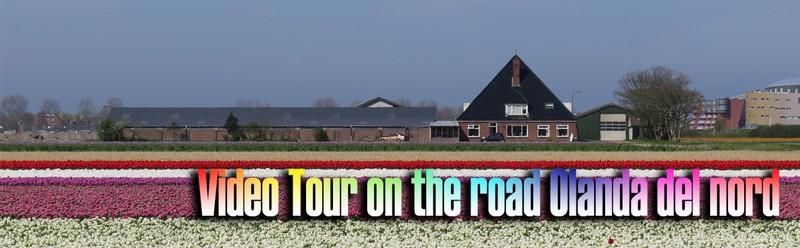 Video Tour Olanda del nord, durante la fioritura dei tulipani