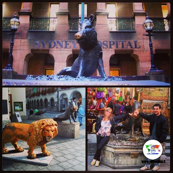 Le curiosità di Firenze- il Porcellino