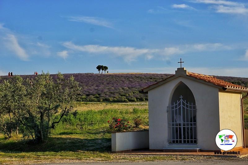 Itinerario lavanda in Toscana, Pieve Santa Luce, Agriturismo Mandriato