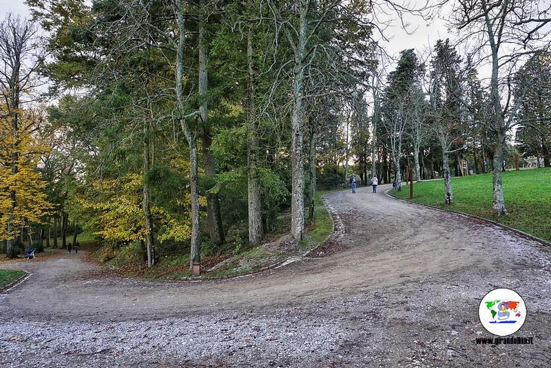 Parco Mediceo di Pratolino, il bosco